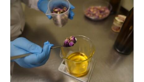 Bio maceráty PURITY VISION