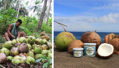 Příběh surovin – Kokosový olej